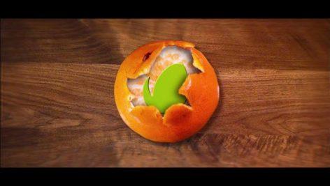 Videohive Tangerine Logo 23354560