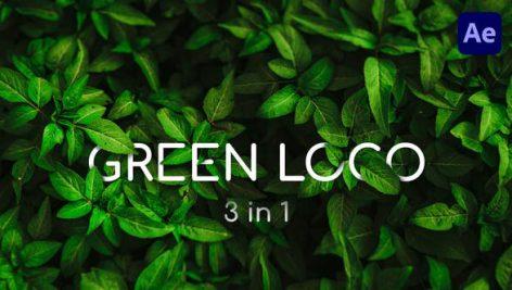 Videohive Clean Green Logo 27818973